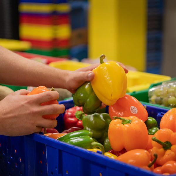 Volunteers organizing food